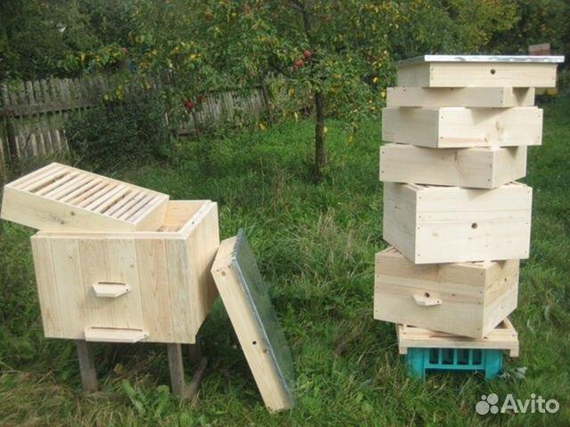 Как из одного улья пчел сделать два