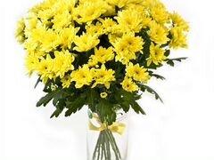 Желтые кустовые хризантемы Доставка
