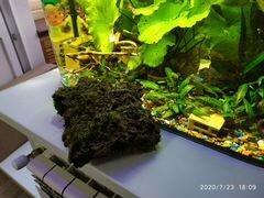 Красивые камни в аквариум