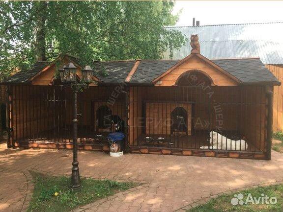 Щенки алабая из племенного питомника купить на Зозу.ру - фотография № 7