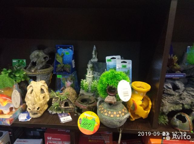 Decorations for aquarium 89081257208 buy 8