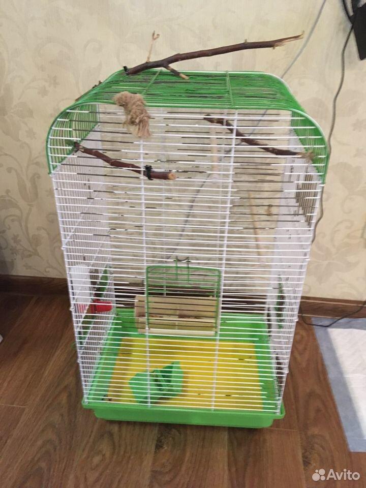 Клетка для птиц  89059939695 купить 2